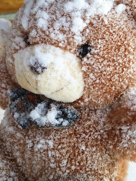 snowy, teddy bear, fabric