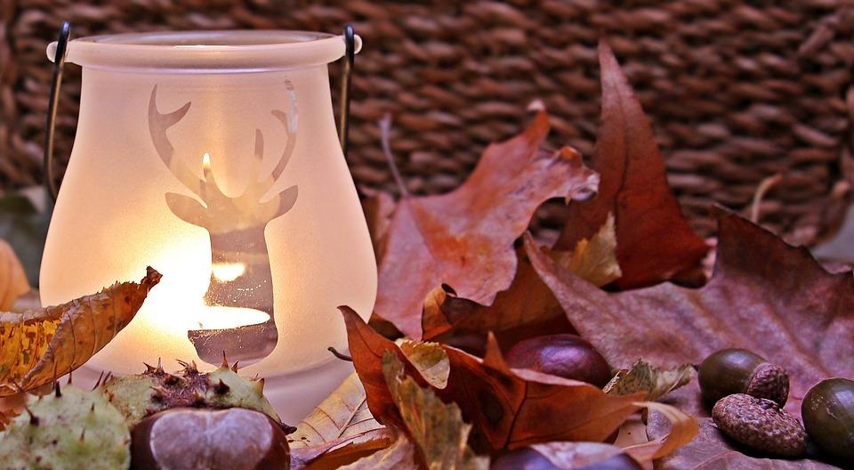 autumn mood, autumn, fall leaves