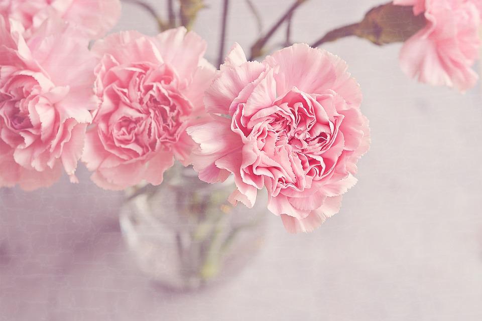 flowers, vase, cloves