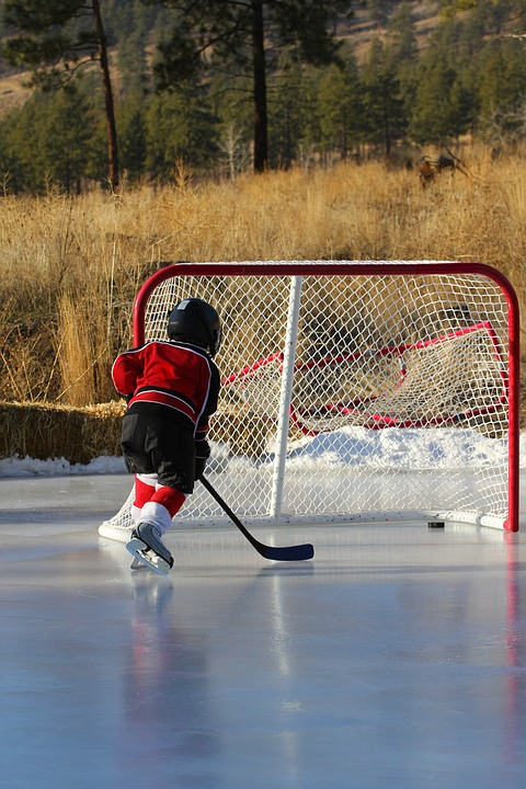 hockey, outdoor rink, net
