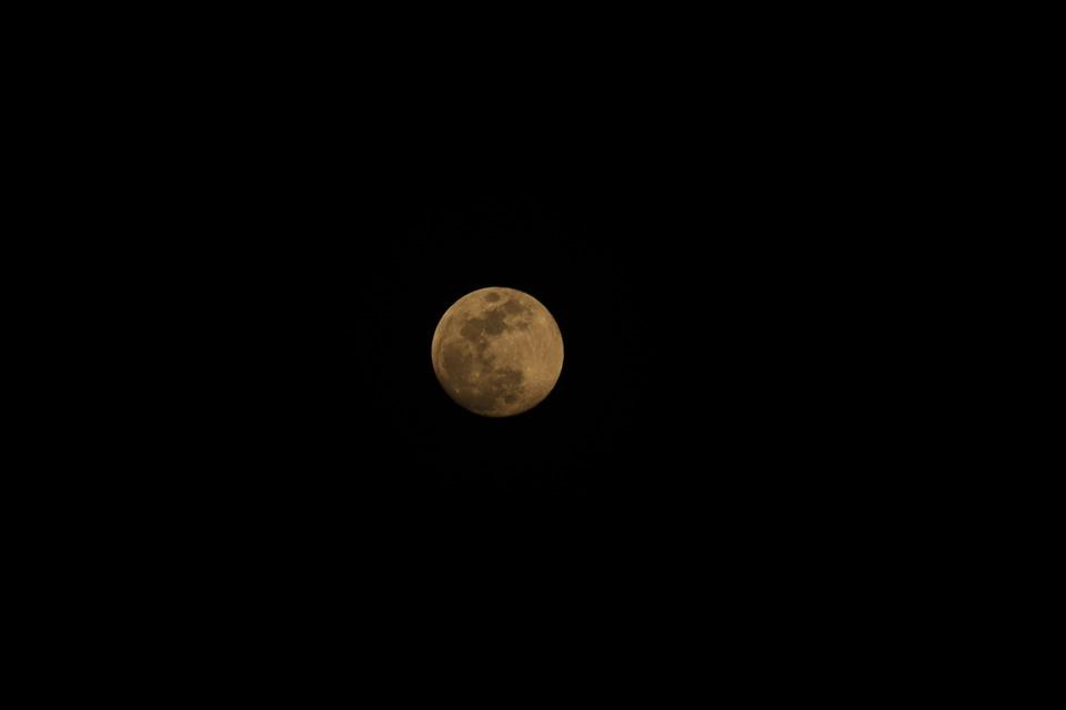 moon, the full moon, full moon