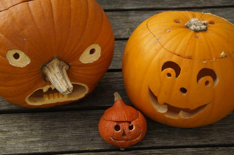 pumpkins, three, halloween