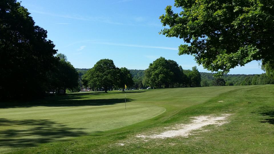 golf, golf course, green