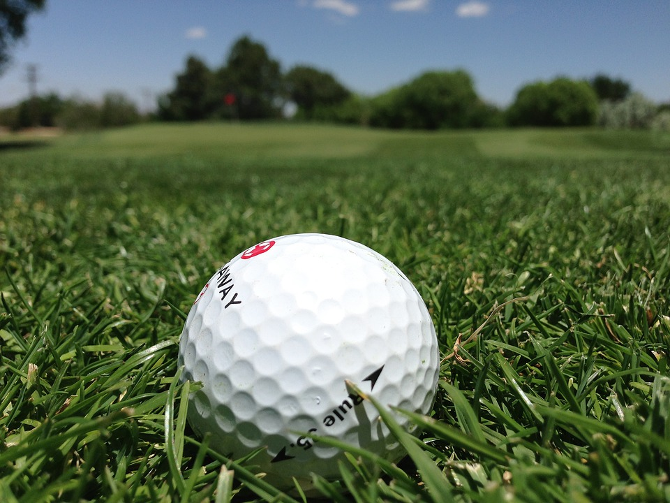 golf, golf ball, grass