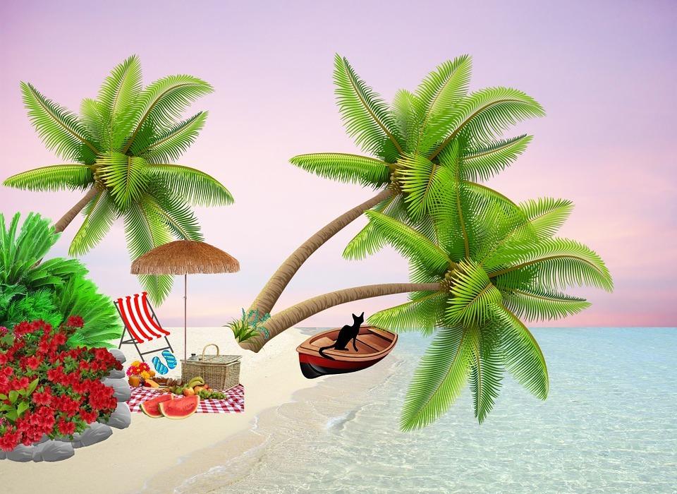 beach, picnic, boat