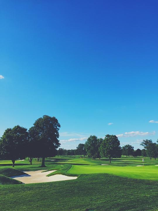 golf course, green, lawn