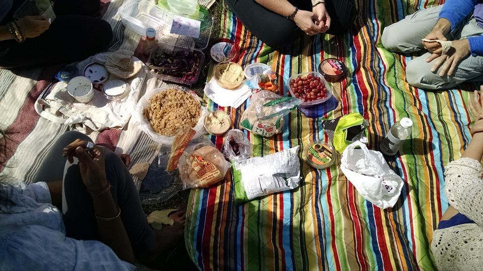 picnic, summer, outdoors