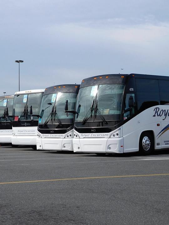 buses, travel, transportation