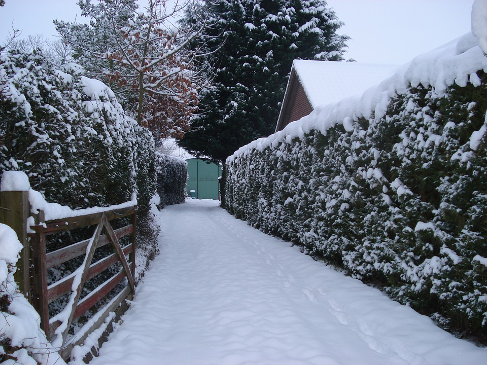 snowy, drive, gate