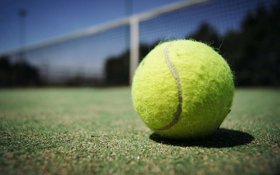 tennis ball, macro, court