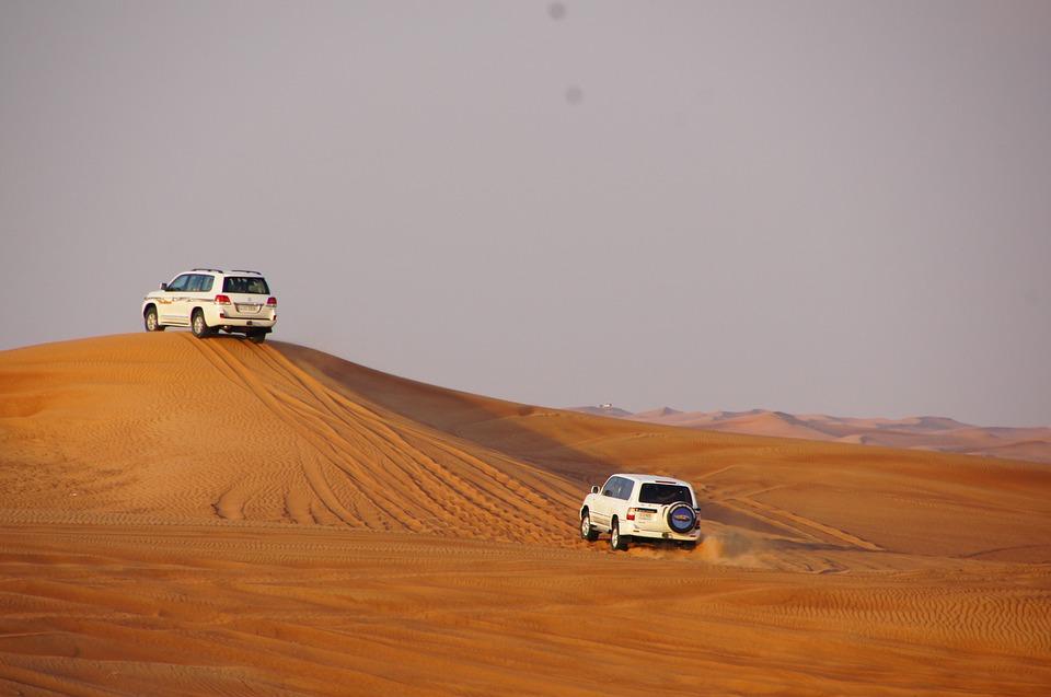 safari, dune, desert