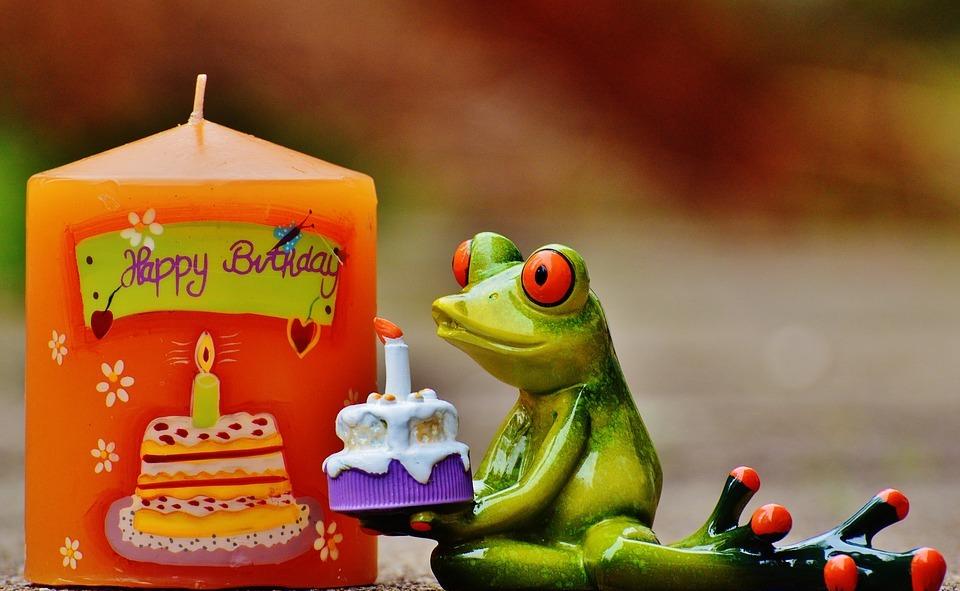 happy birthday, birthday, frog