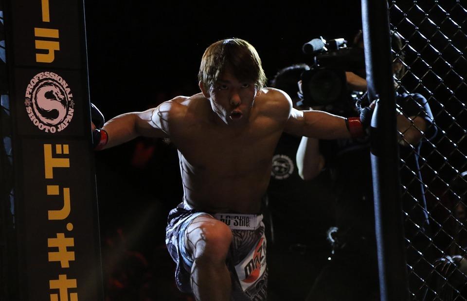 mma, mixed martial arts, japan