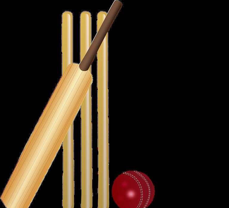 cricket, cricket bat, bat