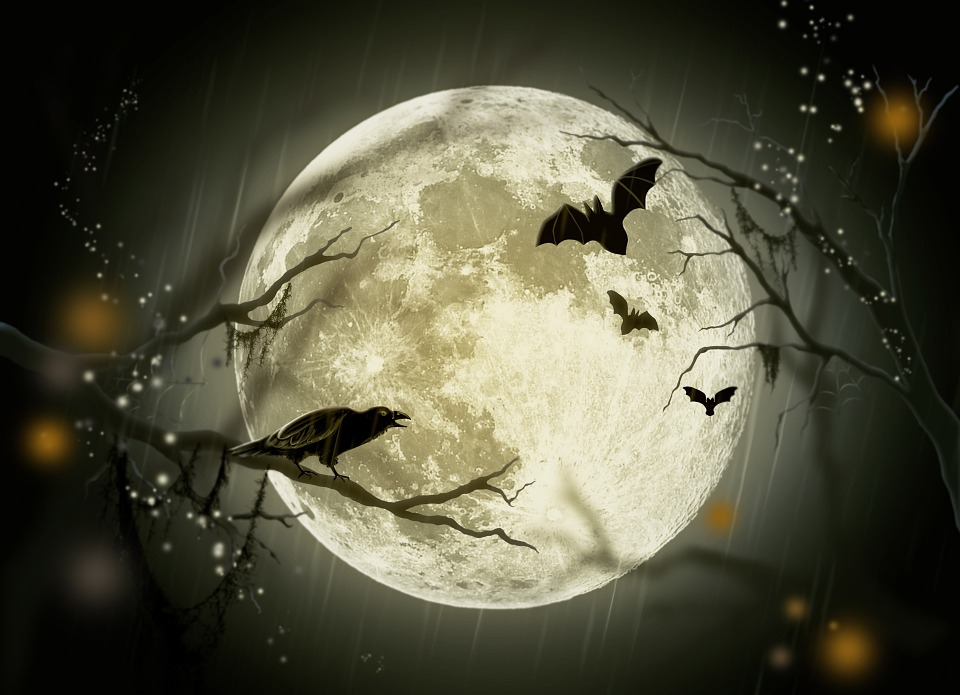 halloween, holidays, mystery