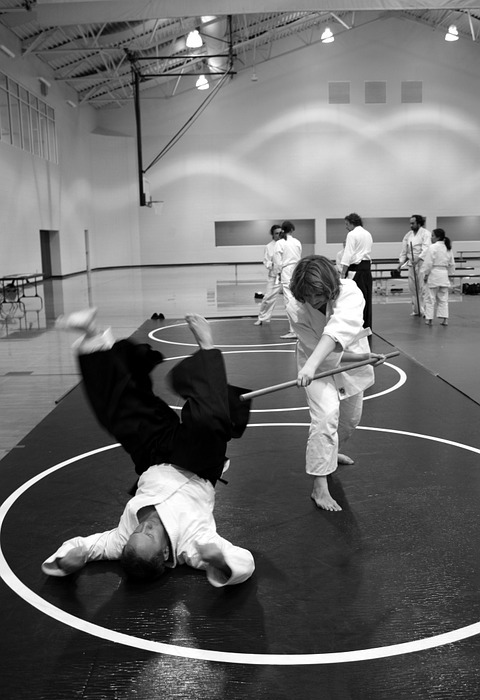 aikido, martial arts, self-defense