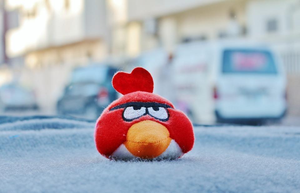 angry bird, red, angry