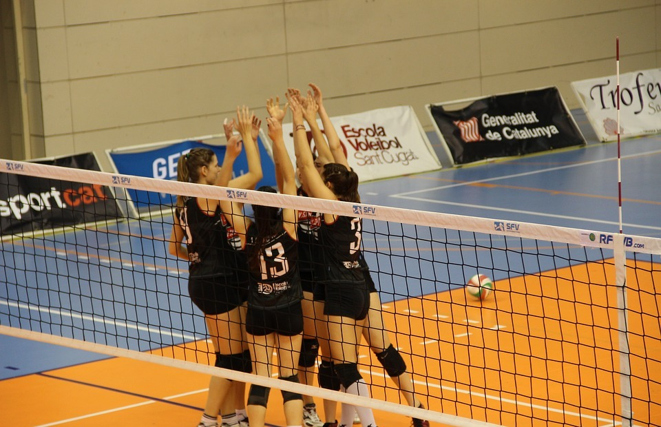 volleyball, party, win
