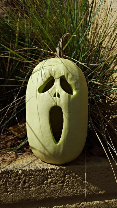 pumpkin, october, halloween