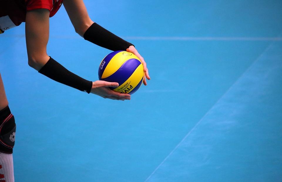 volleyball, sport, premium