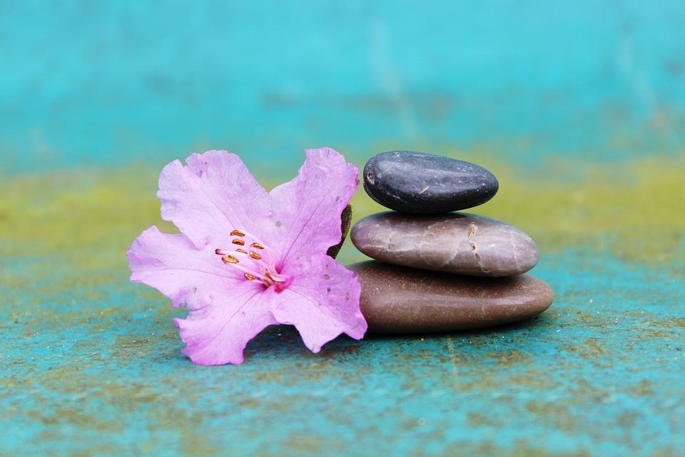 azalea, stone pile, stack