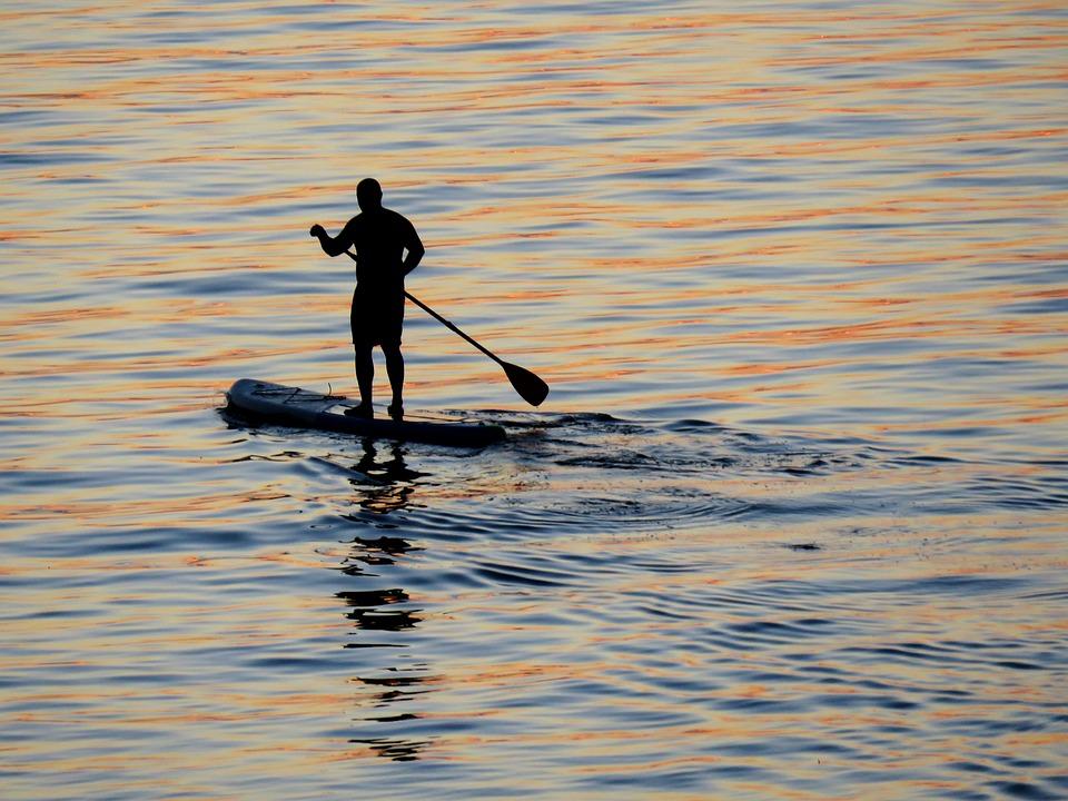 surfing, water, ocean