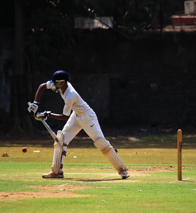 batsman, cricket, defense