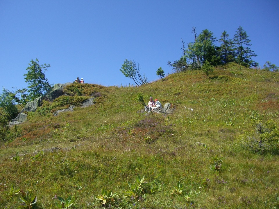 picnic, feldberg, hiking