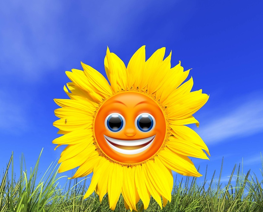 sunflower, smiley, yellow