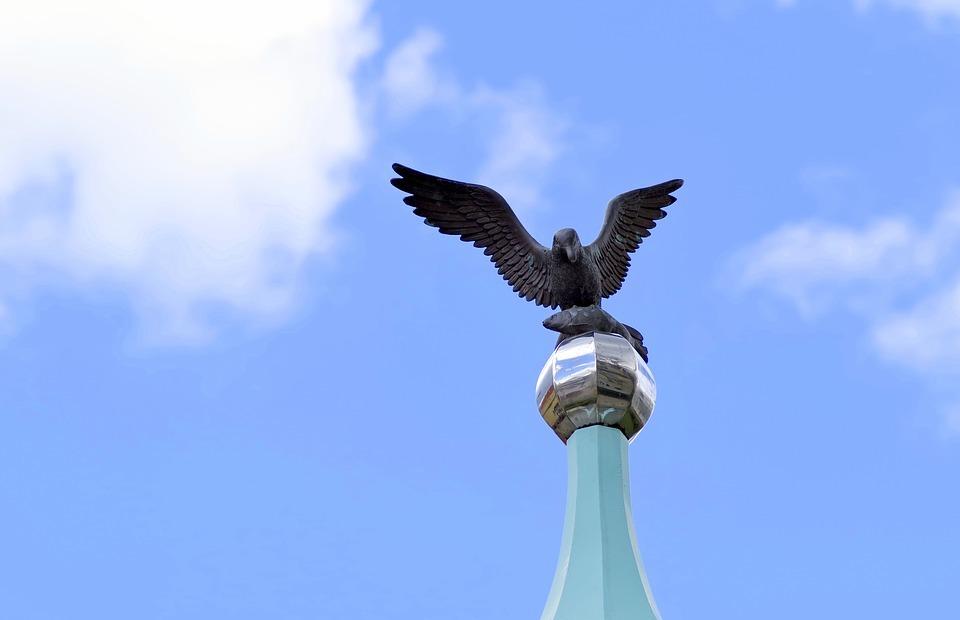 seagull, symbol, sign