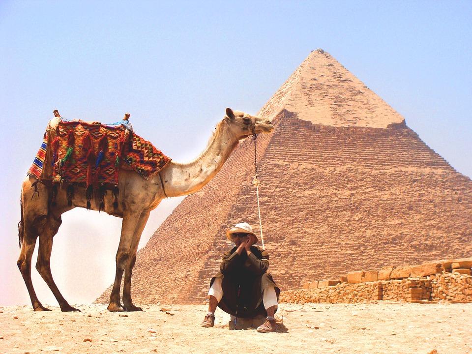 camel, desert, pyramid