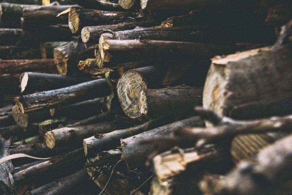 logs, logging, timber