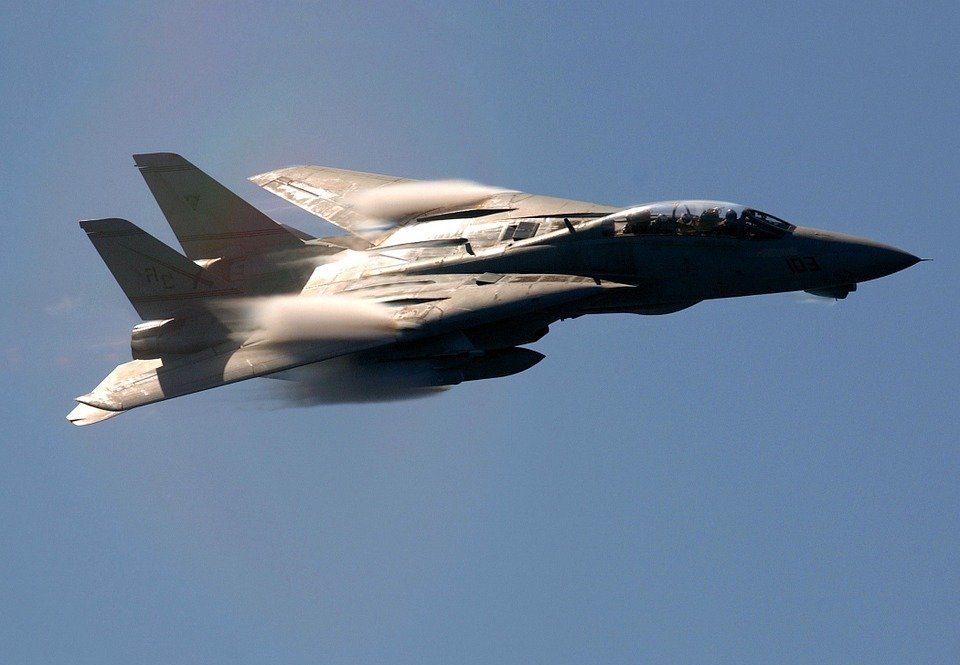 air show, military, f-14
