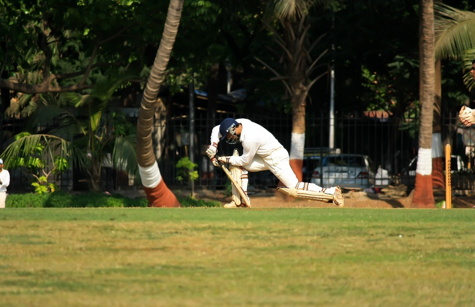 cricket, batting, sports