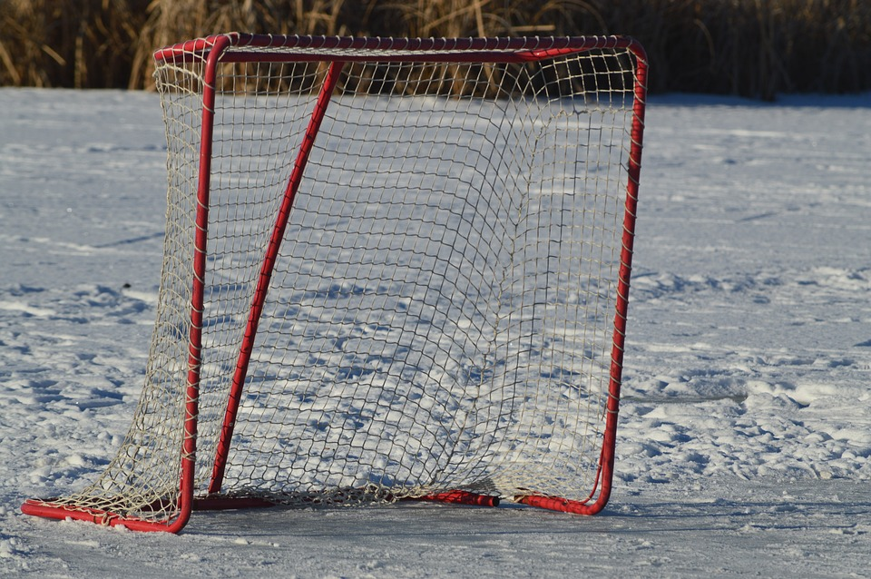 hockey net, outdoor, puck