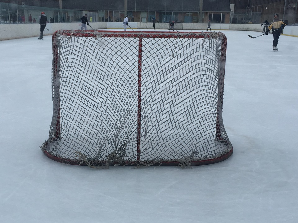 hockey, net, hockey rink
