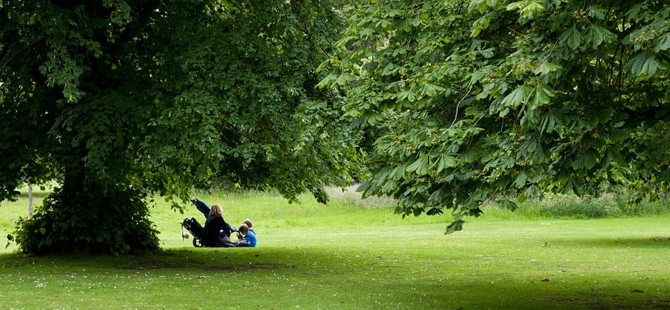 picnic, mother, children