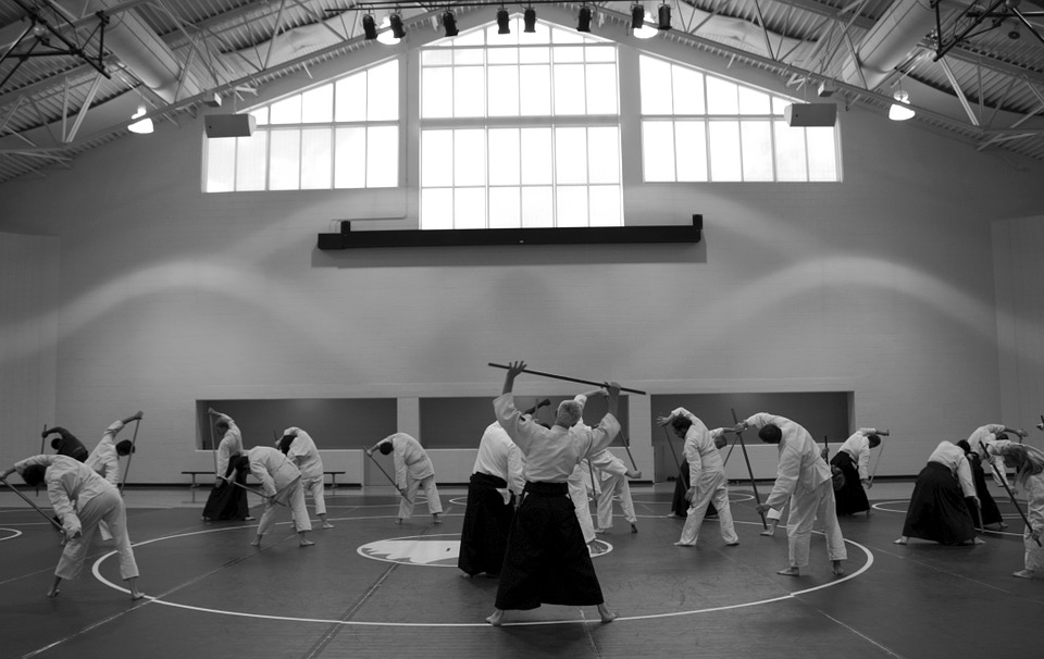 aikido, martial arts, self-defense