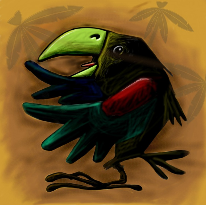 bird, tropical, character