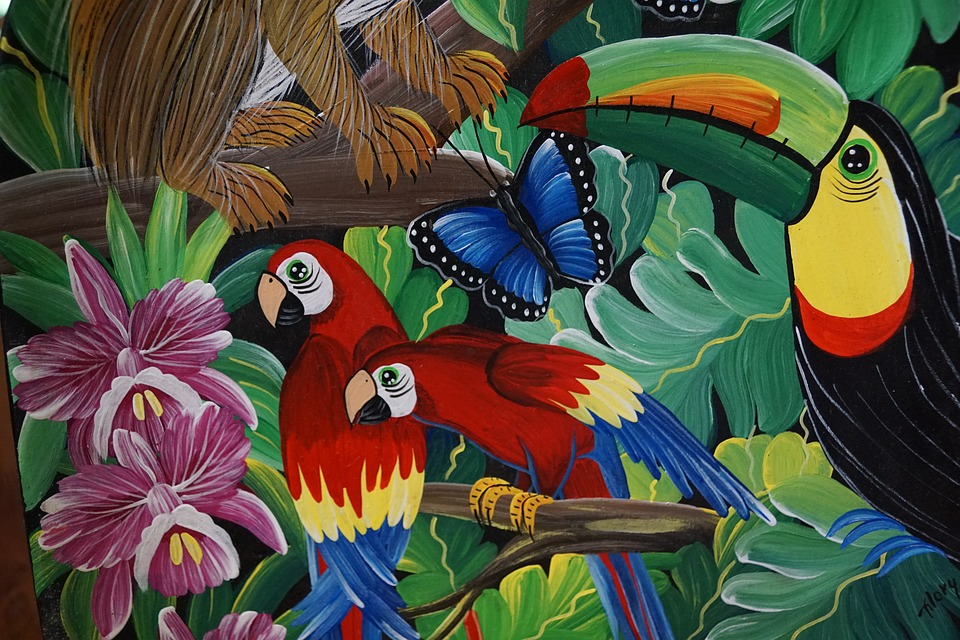parrot, birds, colorful