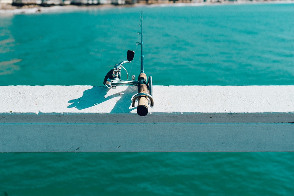 fishing, rod, pivot