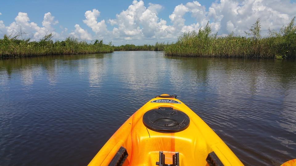 kayak, water, marsh
