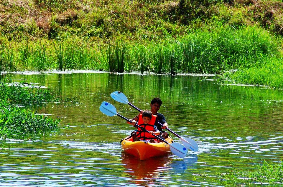 kayak, sports, rowing