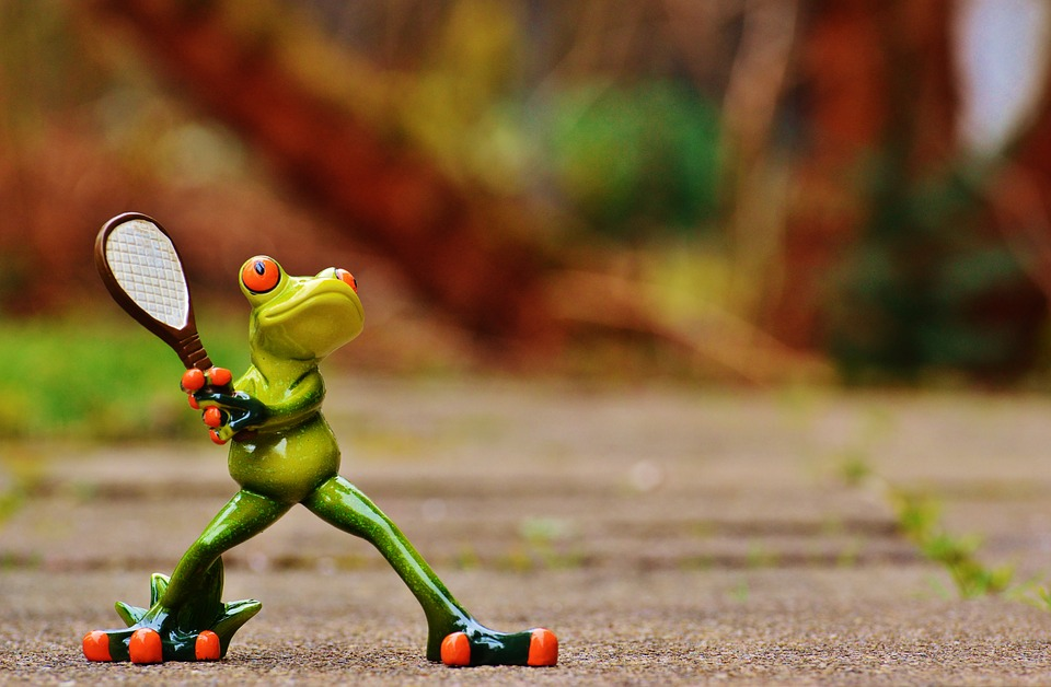 frog, tennis, funny