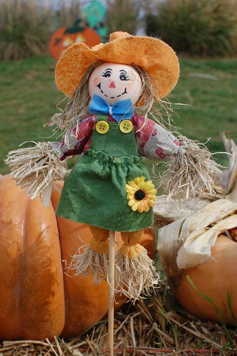 scarecrow, pumpkins, halloween