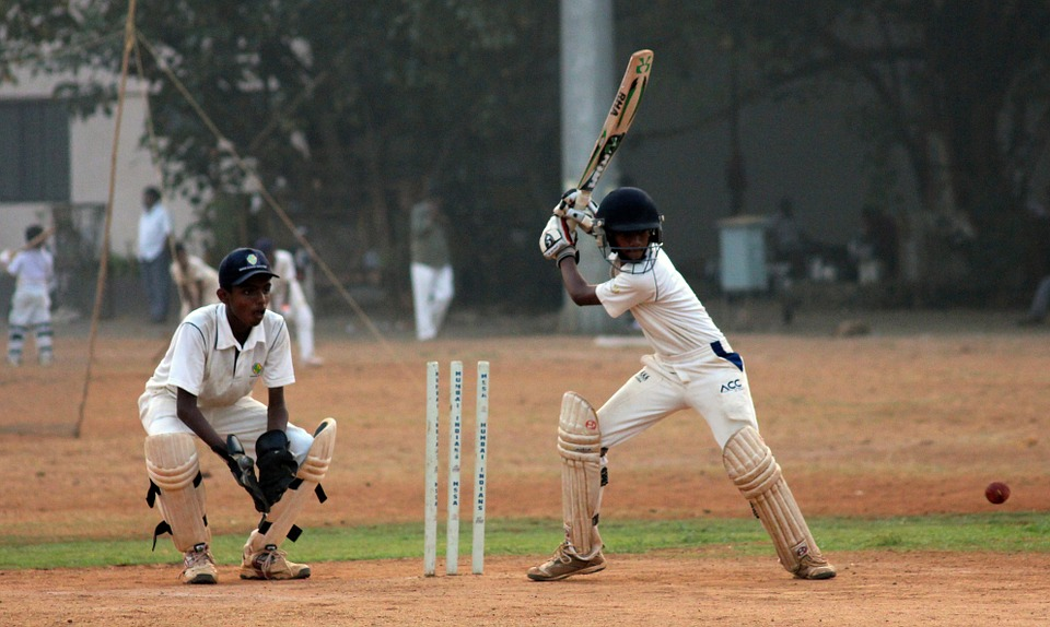 cricket, batsman, ball game