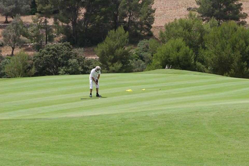 golf, golfer, putting
