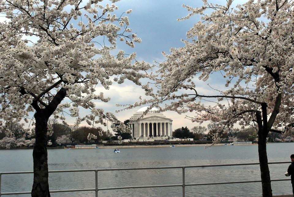 jefferson, memorial, flowers