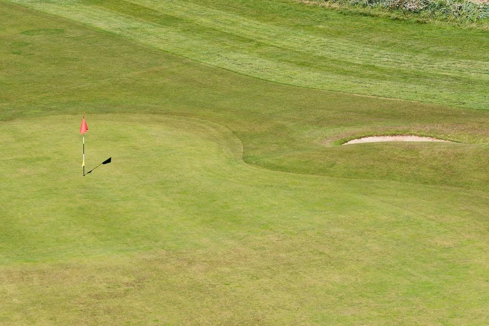 golf, golf green, flag