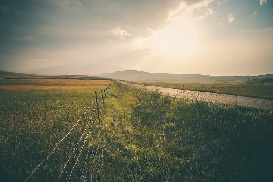 rural, road, landscape